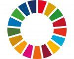 SDG Wheel